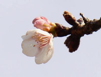 160206-11.jpg