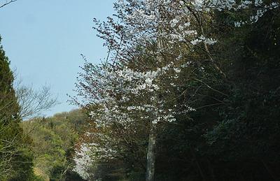 180401-21.jpg